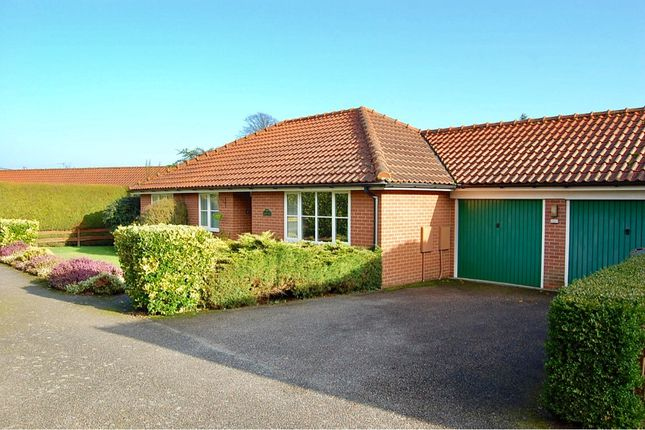 Thumbnail Detached bungalow for sale in The Walnuts, Ufforfd, Woodbridge