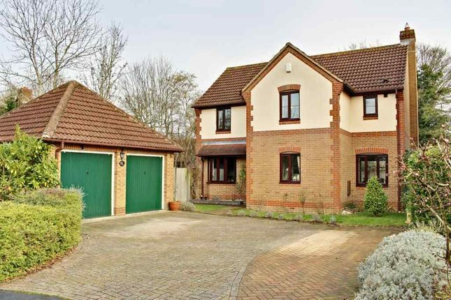 Thumbnail Detached house for sale in Stable Close, Hook