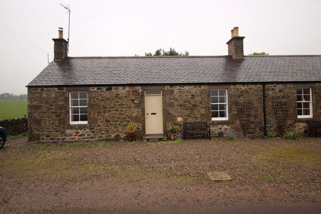 Thumbnail Bungalow to rent in Lethnot, Edzell, Brechin