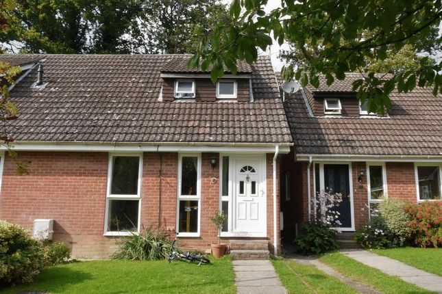Thumbnail End terrace house to rent in Batchelors, Pembury, Tunbridge Wells