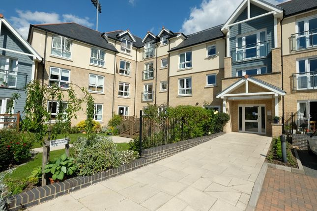 Thumbnail Property to rent in New Writtle Street, Chelmsford
