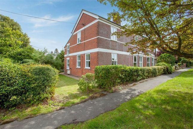 Thumbnail 5 bed semi-detached house for sale in School Road, Kelvedon Hatch, Brentwood, Essex
