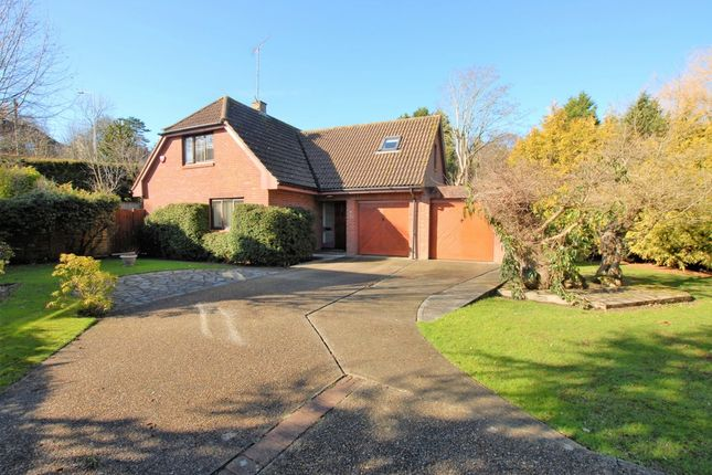 Thumbnail Detached house for sale in Turnpike Hill, Hythe