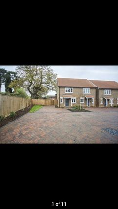 Thumbnail Semi-detached house to rent in Harwood Court, Horsham
