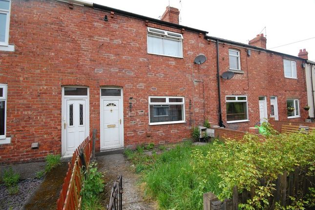 Thumbnail Terraced house to rent in Larch Terrace, Langley Park, Durham