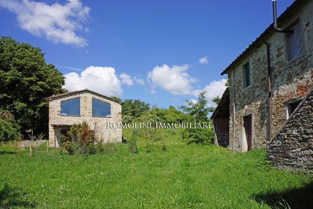 Old Farmhouse With Annex And Land For Sale Anghiari