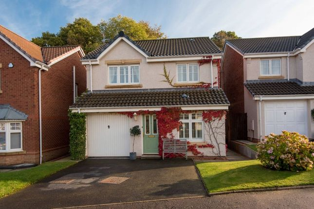Thumbnail Detached house for sale in 28 Wilson Road, Dunbar