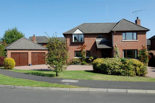 Thumbnail Detached house for sale in 41, Chimera Wood, Bangor