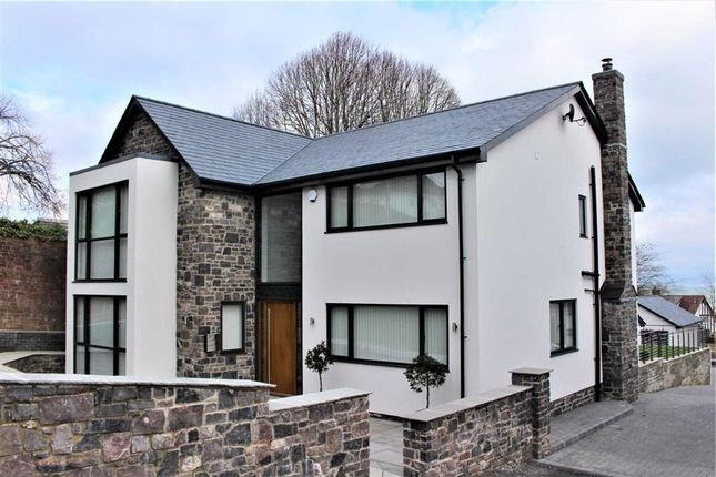 Thumbnail Detached house for sale in West Cross Avenue, Mumbles