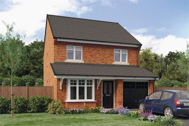 "Thumbnail Detached house for sale in ""Greene"" at Croston Road, Farington Moss, Leyland"