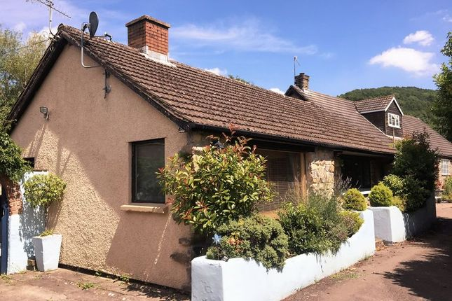 Thumbnail Detached bungalow to rent in Tintern, Chepstow