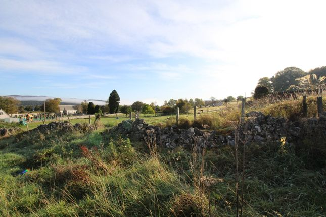 Picture No. 11 of The Plot Kincardine Hill, Ardgay, Sutherland IV24