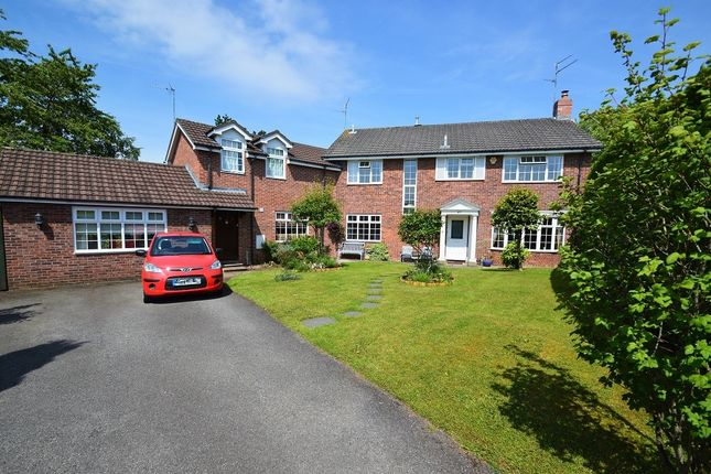 Thumbnail Detached house for sale in Ridgeway, Lisvane