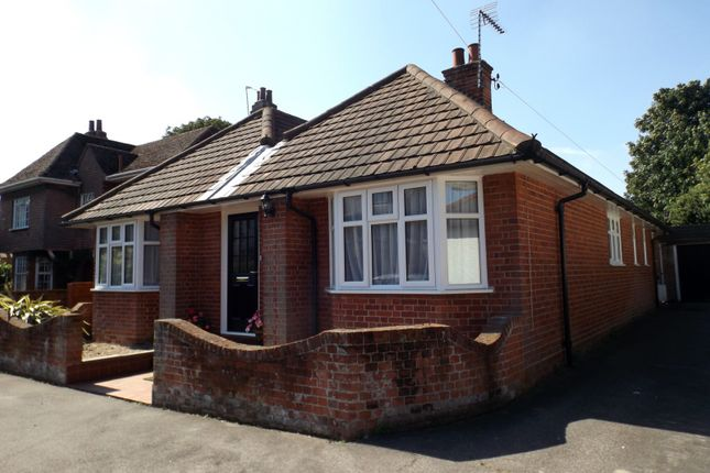 Thumbnail Detached bungalow to rent in London Road, Beccles