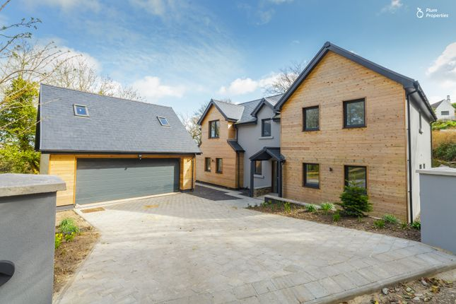 Thumbnail Detached house for sale in Clay Head Road, Baldrine, Isle Of Man