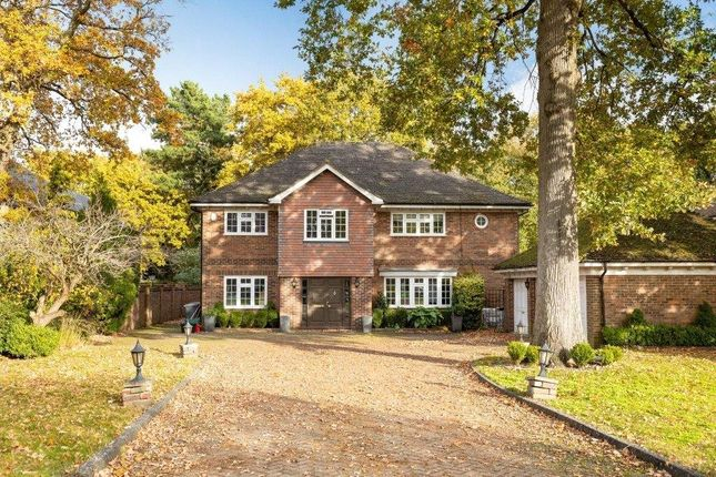 Thumbnail Detached house for sale in Birch Mead, Orpington, Kent