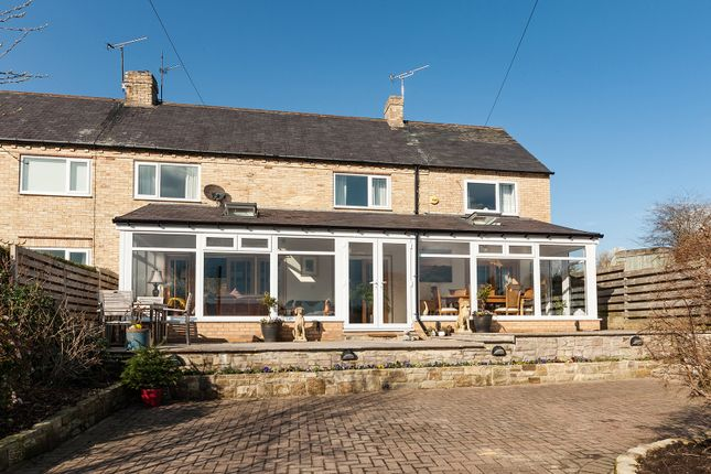 Thumbnail Semi-detached house for sale in 1 Agricultural Cottages, Juniper, Hexham, Northumberland