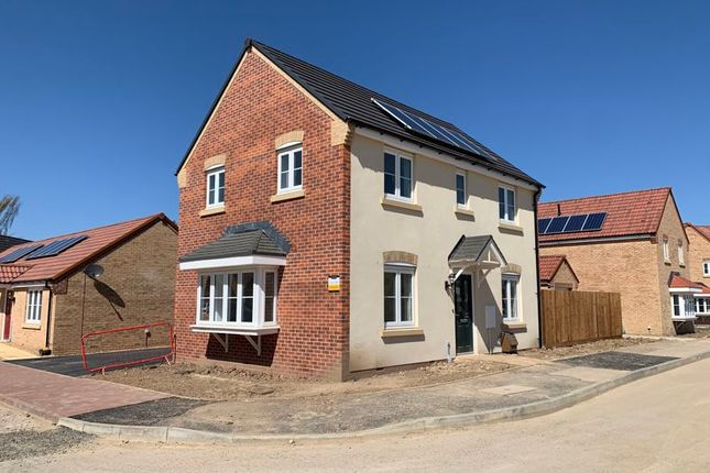 Thumbnail Detached house for sale in The Nottingham @ Abbey Park, Thorney, Peterborough