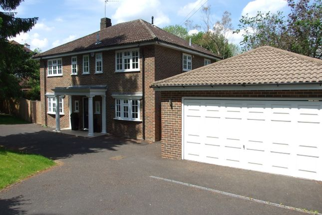 Thumbnail 4 bedroom detached house to rent in The Avenue, Tadworth
