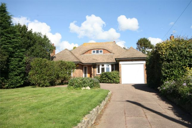 Thumbnail Detached bungalow for sale in Terminus Avenue, Bexhill-On-Sea