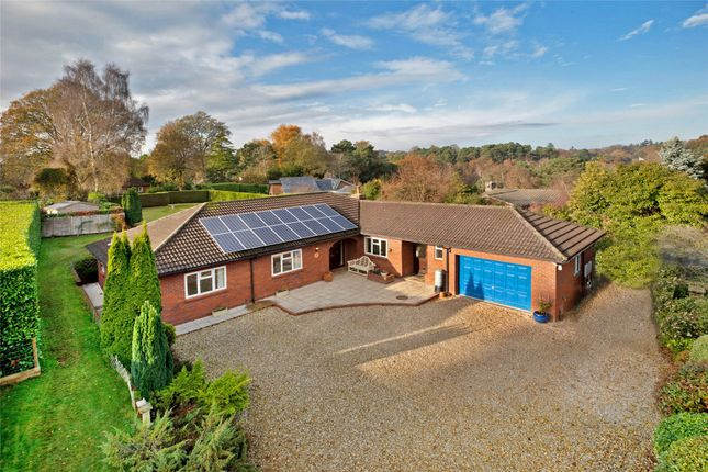 Thumbnail Bungalow for sale in West Hill, Ottery St. Mary, Devon