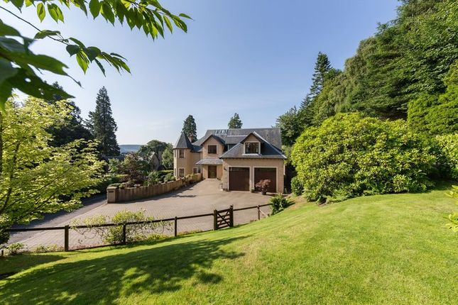 Thumbnail Detached house for sale in Castanea, The Woll, Ashkirk, Selkirk, Scottish Borders
