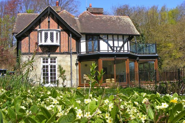 Thumbnail Property for sale in Luccombe Chine, Luccombe, Shanklin, Isle Of Wight