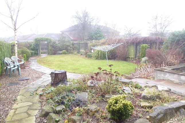 Rear Garden of Cottingham Road, Hulll HU5