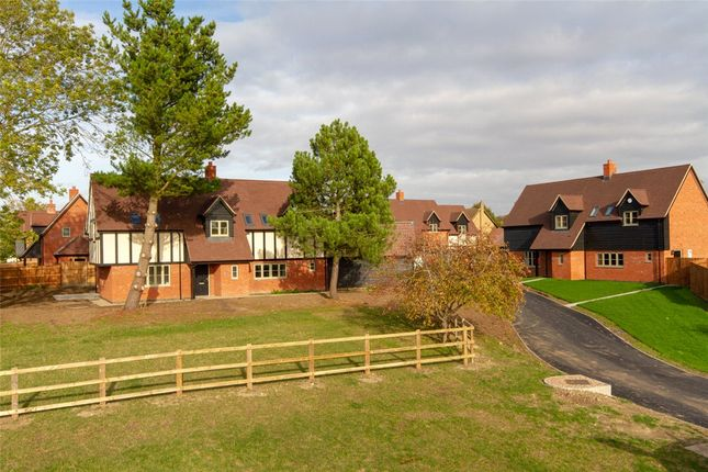 Thumbnail Detached house to rent in Fox Street, Great Gransden, Sandy, Cambridgeshire