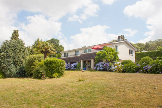 Thumbnail Detached house for sale in Milford Lane, Tamerton Foliot, Plymouth
