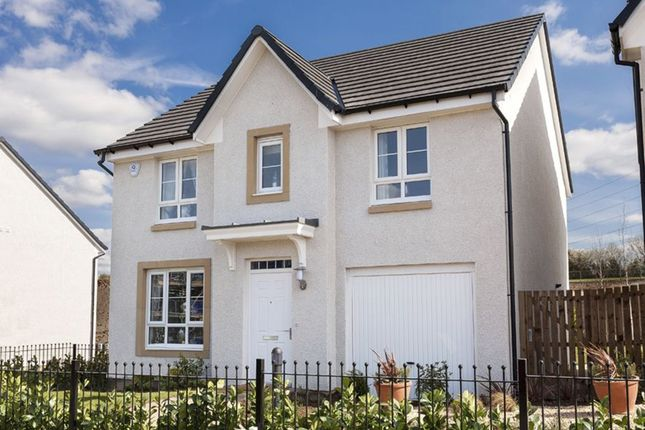 """Thumbnail Detached house for sale in """"Fernie"""" at Woodlands Grove, Lower Bathville, Armadale, Bathgate"""