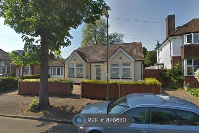 Thumbnail Bungalow to rent in Exeforde Avenue, Ashford