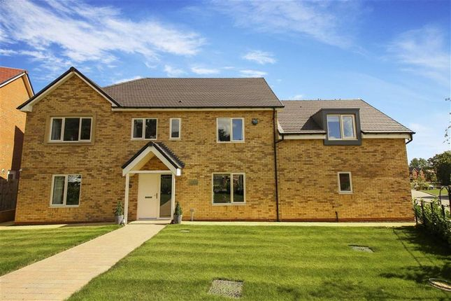 Thumbnail Detached house for sale in Beamish Way, Stannington, Northumberland