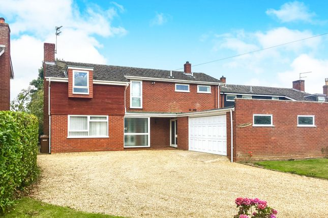 Thumbnail Detached house for sale in The Green, Shipdham, Thetford