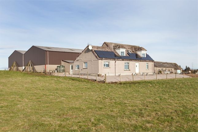 Thumbnail Detached house for sale in Fyvie, Fyvie, Turriff, Aberdeenshire