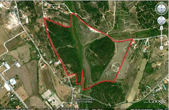 Thumbnail Land for sale in Tomar, Portugal