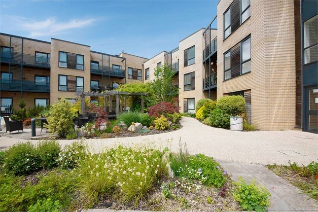 1 bed property for sale in Darnel Road, Waterlooville, Hampshire PO7