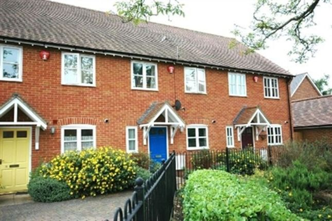Thumbnail Terraced house to rent in Saddlers Close, Fordingbridge