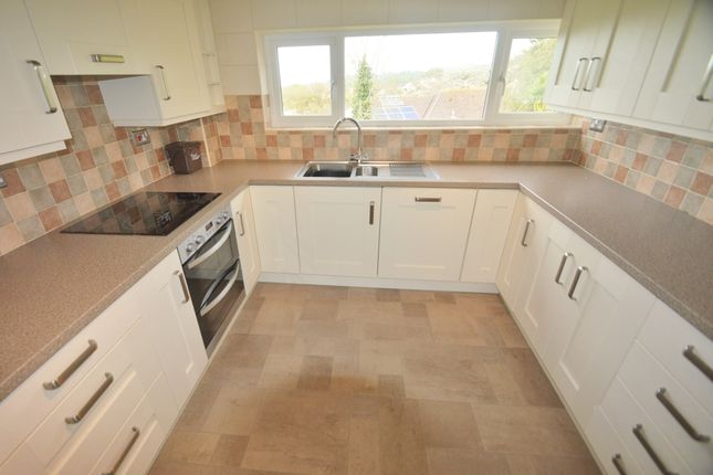 Thumbnail Semi-detached house to rent in Exe Hill, Torquay