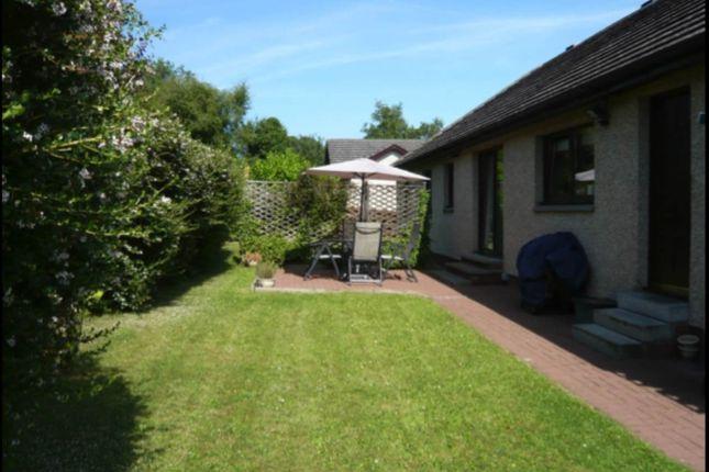 Thumbnail Detached house to rent in Westbank Terrace, Westmuir, Kirriemuir