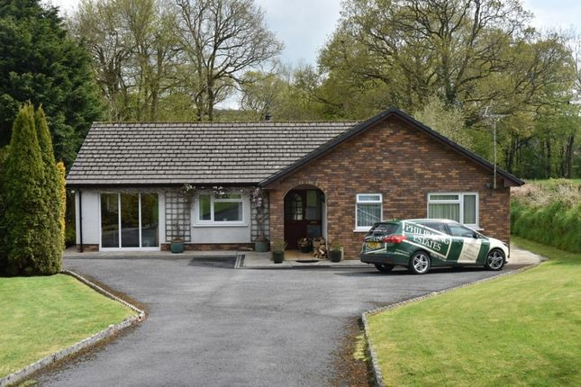 Thumbnail Detached bungalow for sale in Cenarth, Newcastle Emlyn