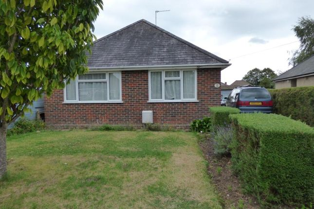 Thumbnail Detached bungalow for sale in Sylvia Crescent, Totton