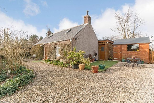 1 bed cottage to rent in Luthermuir, Laurencekirk AB30