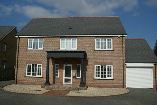 Thumbnail Detached house for sale in Parcyrynn, Llandysul