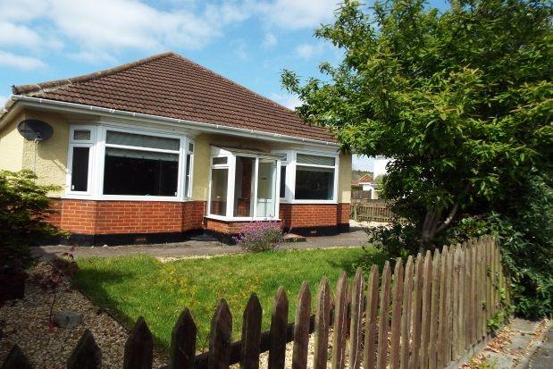Thumbnail Bungalow to rent in Wimborne Road West, Wimborne