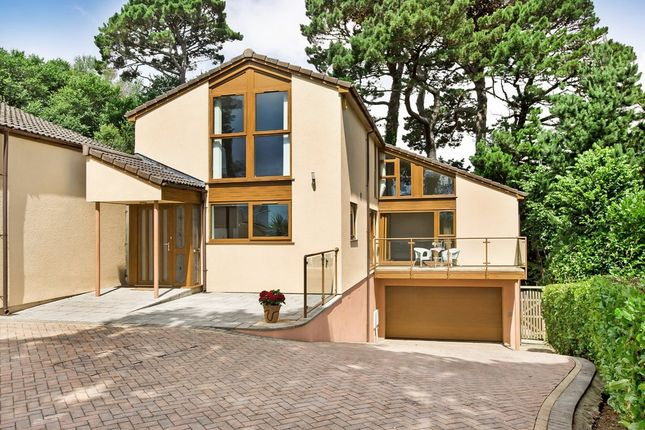 Thumbnail Detached house for sale in Hollacombe Lane, Paignton