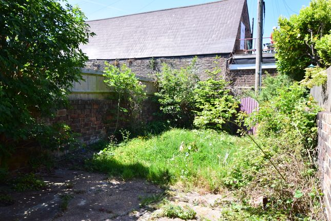 Garden of Manifold Road, Eastbourne BN22