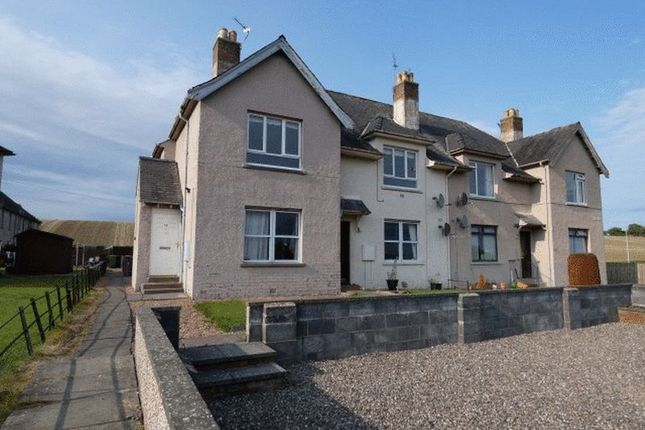 Thumbnail Flat to rent in Balfour Place, Milton Of Balgonie, Fife