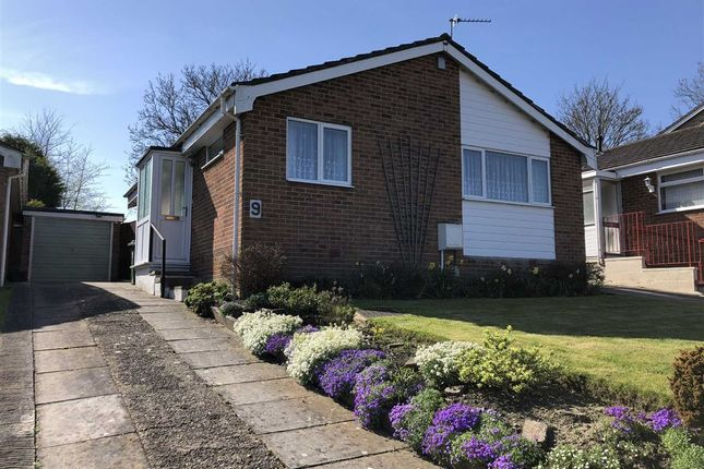 Thumbnail Detached bungalow to rent in Leighton Park Road, Westbury, Wiltshire