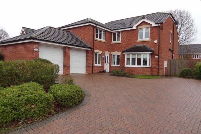 Thumbnail Detached house to rent in Dere Croft, Borrowash, Derby